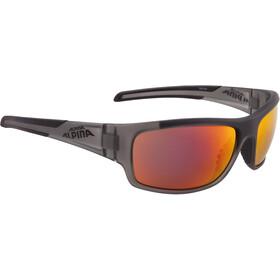 Alpina Testido Glasses anthracite matt-black